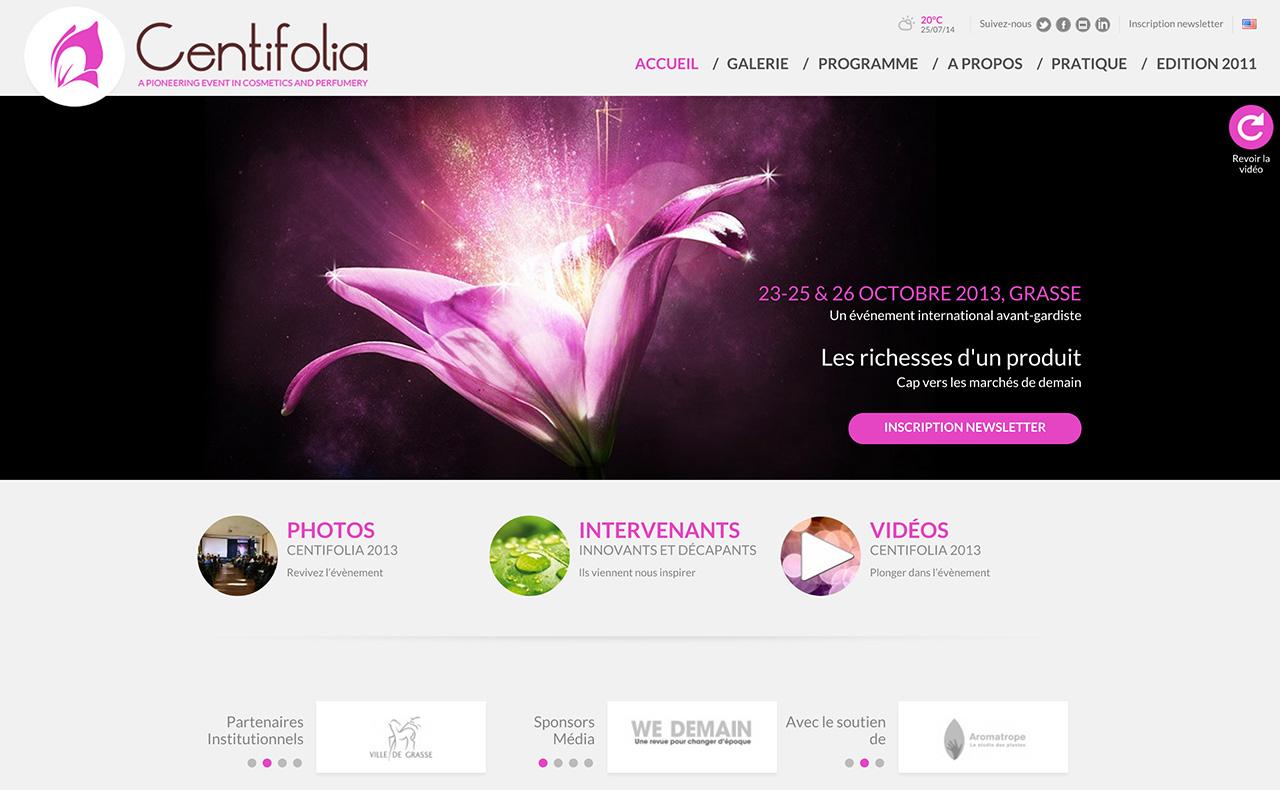 centifolia01